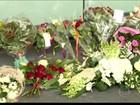Parentes de vítimas do voo MH 17 buscam informações em Amsterdã