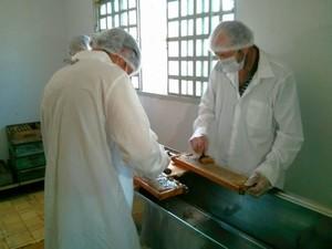 Expectativa é coletar 40 toneladas de mel na região (Foto: Cláudio Nascimento / TV TEM)