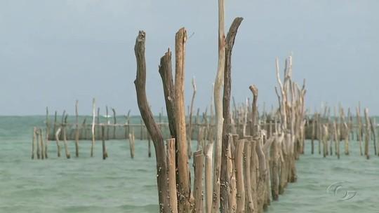 Fiscalização flagra caiçaras irregulares em praias do litoral norte de Alagoas