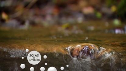 Viver perto da natureza, das cachoeiras, é uma joia do interior!