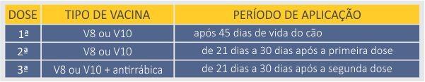 Tabela de vacinação obrigatória (Foto: Divulgação)