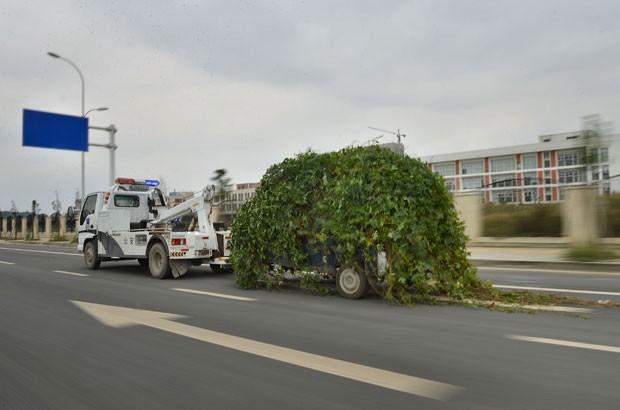 Polícia de trânsito em Chengdu recolheu uma van que estava coberta por plantas (Foto: China Foto Press)