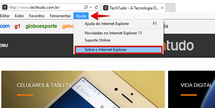 Clique em Sobre o Internet Explorer (Foto: Felipe Alencar/TechTudo)