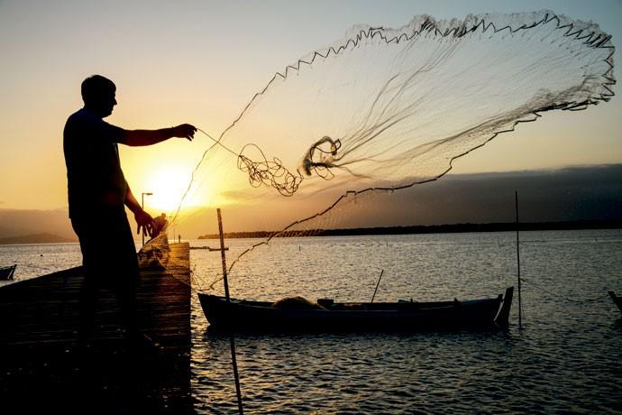 Todos a bordo: a reserva extrativista Pirajubaé é um dos últimos redutos onde se pode encontrar o molusco berbigão em Florianópolis (Foto: Fernando Angeoletto)