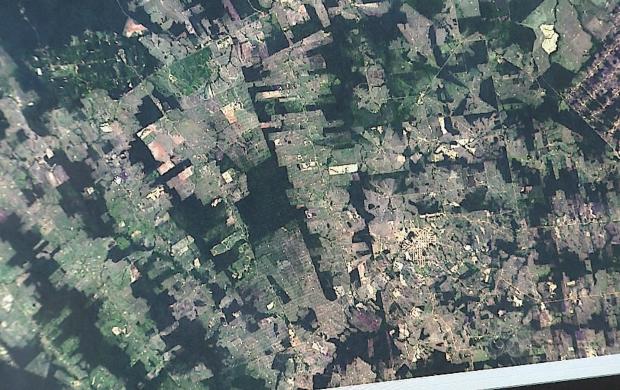 Imagens de satélites ajudarão na pesquisa dos efeitos da seca sobre a floresta (Foto: Acre TV)