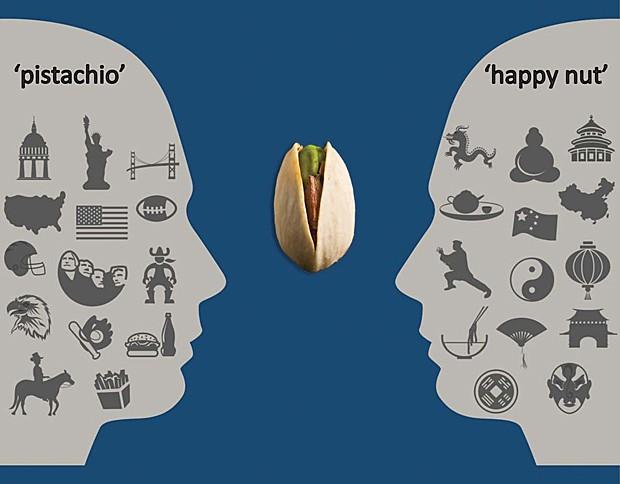 Linguagem (Foto: Dmitry Rukhlenko/iStockphoto.com/PNAS)