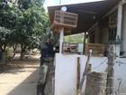 Em Taiobeiras, Polícia Militar apreende pássaros silvestres em fazenda