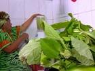 Dona Onete ensina a fazer um molho de pimenta especial com jambu