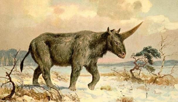 Pintura de um Elasmotherium sibiricum (gigante unicórnio siberiano) por Heinrich Harder, ca. 1920  (Foto: Heinrich Harder, Wikimedia Commons [Public Domain])