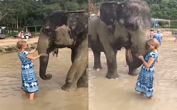 Paris Hilton tomou banho de lama com elefantes  (Foto: Reprodução/Instagram)