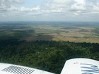 Floresta amazônica perde área de  102 km² em outubro, afirma Imazon