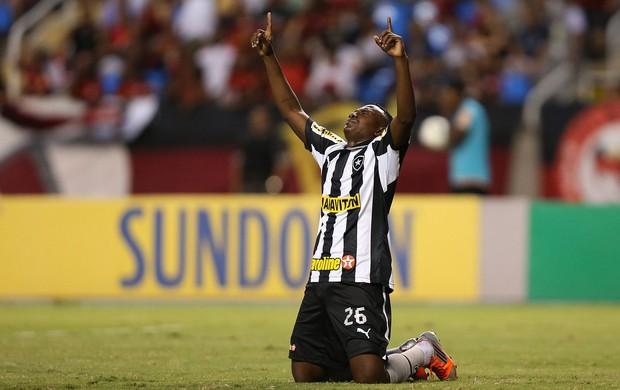 Sasa gol Botafogo x Flamengo (Foto: Satiro Sodré / Ag. Estado)