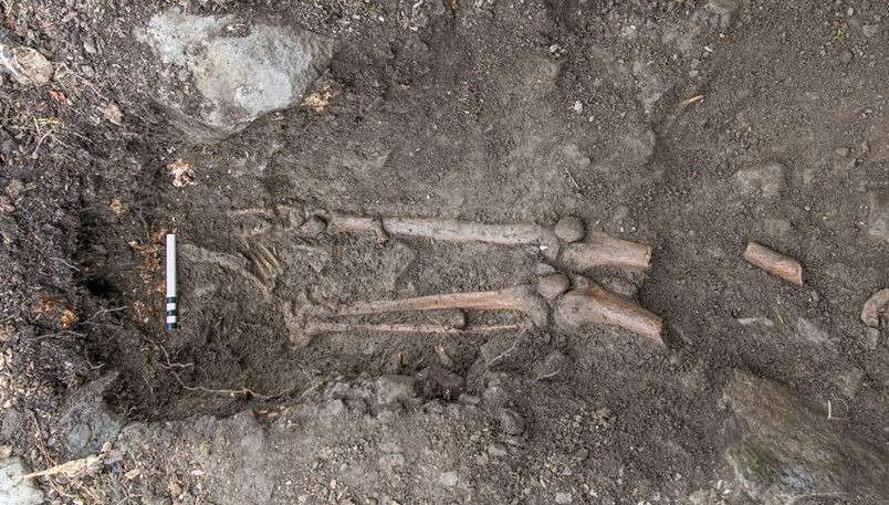 A metade superior do esqueleto estava pendurada na árvore e a inferior estava na terra (FOTO: REPRODUÇÃO)