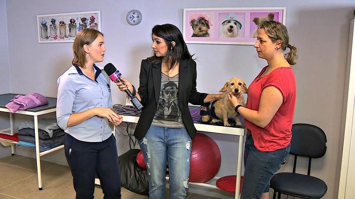 Cris Silva clínica de reabilitação de animais Mistura com Rodaika (Foto: Reprodução/RBS TV)