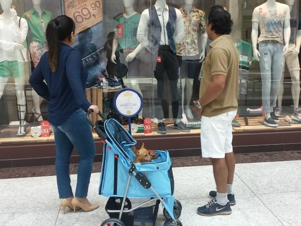 Donos podem passear tranquilamente com o animalzinho em carrinho próprio (Foto: Divulgação/ Assessoria)
