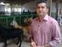 Clube Rural mostra a 66ª Feira de Exposição Agropecuária do Piauí