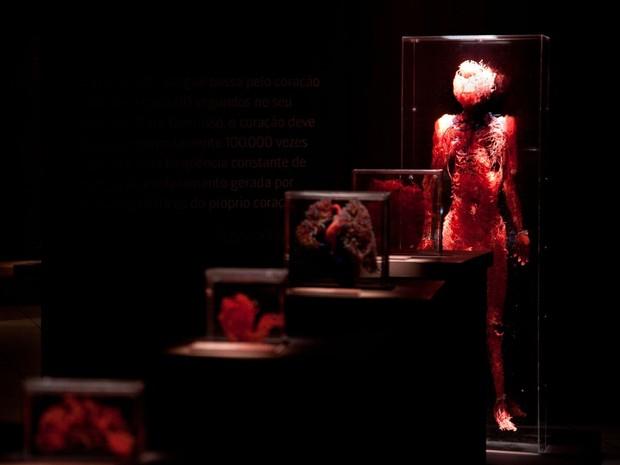 Curiosidades frequentes sobre o funcionamento do corpo humano serão esclarecidas (Foto: Mário Águas)