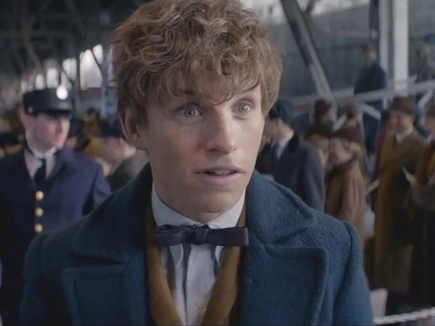 'Animais fantásticos e onde habitam', de J.K. Rowling, ganha trailer; assista (Foto: Reprodução/Warner Bros.)