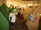 Exposição utiliza a tecnologia para mostrar biodiversidade brasileira