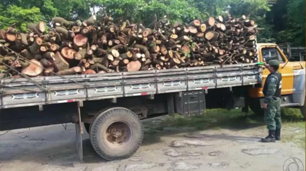 Madeiras já estavam em caminhão para serem transportadas em João Pessoa (Foto: Reprodução/TV Paraíba)