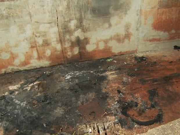 Após cair na galeria, o veículo pegou fogo e as vítimas morreram carbonizadas (Foto: Carlos Velardi / EPTV)