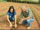 Em MG, manejo sustentável garante fartura de colheita em época de seca