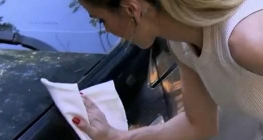 sustentável (TV Globo)