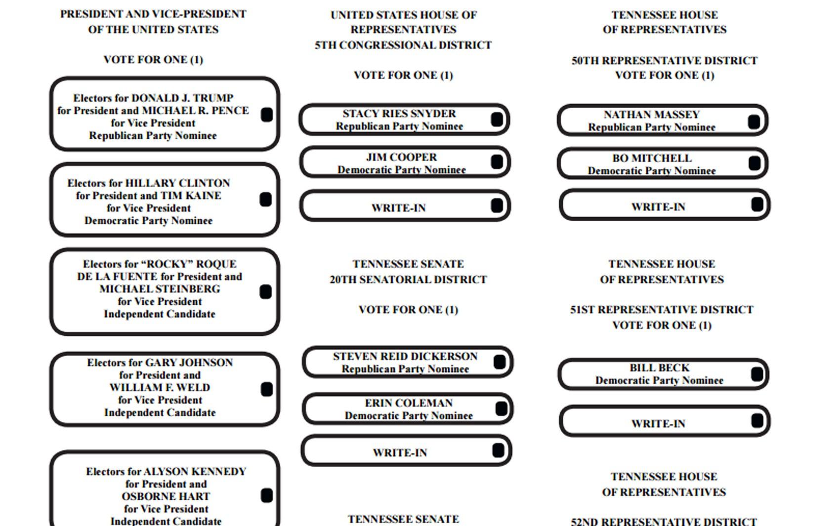 Parte de cédula eleitoral do condado de Davidson, no estado do Tennessee, nos EUA (Foto: Reprodução/Nashville.gov)