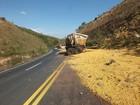 Motorista morre após acidente na BR-354 em Córrego Danta