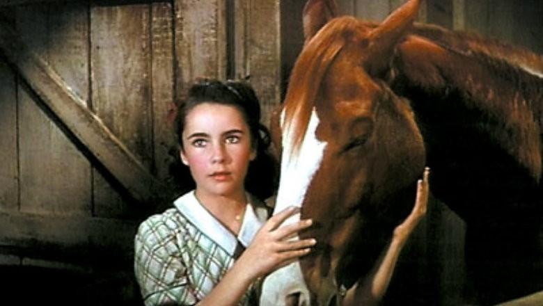 listas_cultura_filmes_cavalos (Foto: Reprodução)