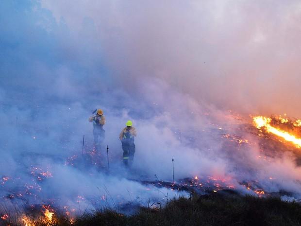 Icêndio atinge floresta perto da cidade de Berango, no norte da Espanha (Foto: REUTERS/Vincent West)