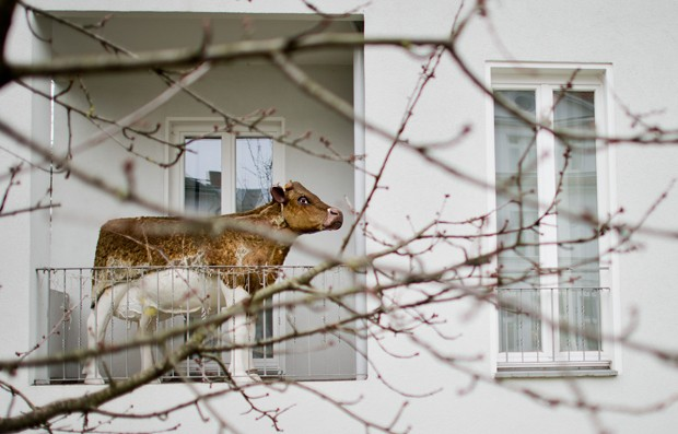 Estátua deixou vizinhos e curiosos intrigados (Foto: Julian Stratenschulte, DPA/AFP)