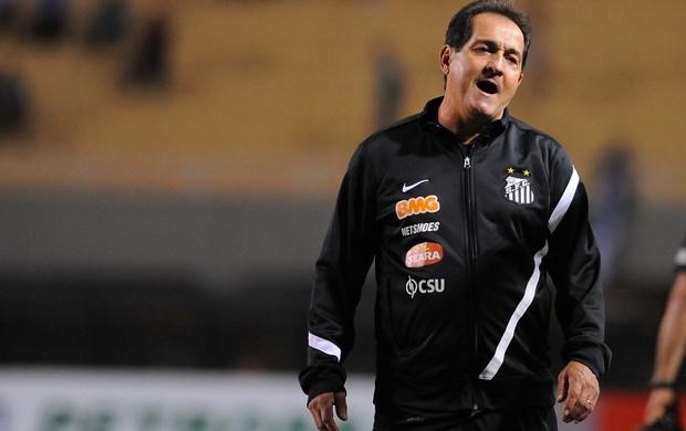 Muricy Ramalho Santos Clássico Palmeiras (Foto: Marcos Ribolli/Globoesporte.com)