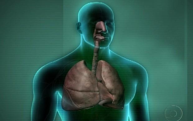 fator tóxico (Rede Globo)