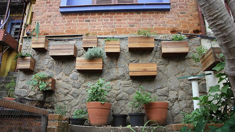 horta-urbana-cidades-verdes-são-paulo-alex-blanco (Foto: Lucas Alencar/Ed. Globo)