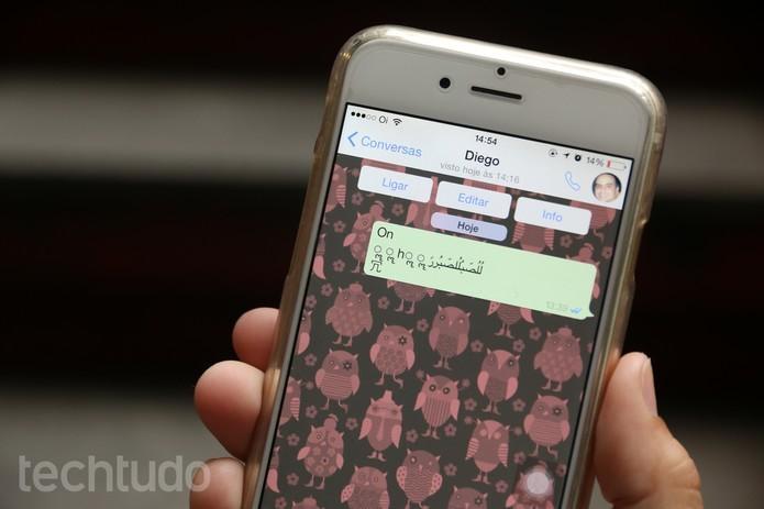 Código enviado pelo WhatsApp travava iPhone (Foto: Anna Kellen Bull/TechTudo)