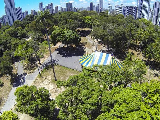 Sítio da Trindade foi escolhido pela grande quantidade de árvores  (Foto: Eduardo Rodrigues/Divulgação)