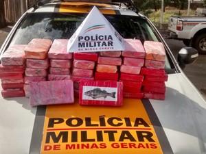 Polícia apreendeu drogas em Frutal (Foto: Polícia Militar Rodoviária/Divulgação)