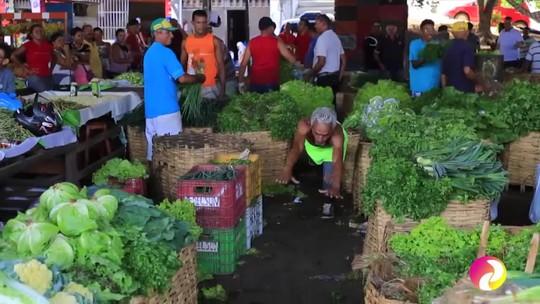 Frutas, verduras e muitos sabores no 'Programão' deste sábado (14)