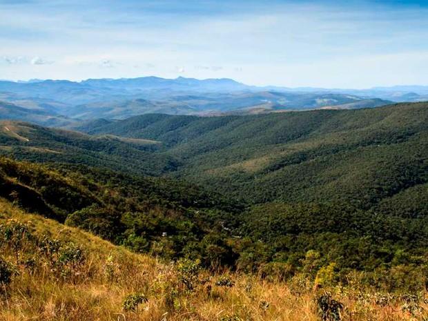 Terreno 'Fazenda Velha' onde a Vale quer construir barragem de rejeitos de minério 10 vezes maior que a de Fundão, segundo ambientalistas (Foto: Robson de Oliveira/ Arquivo Pessoal)