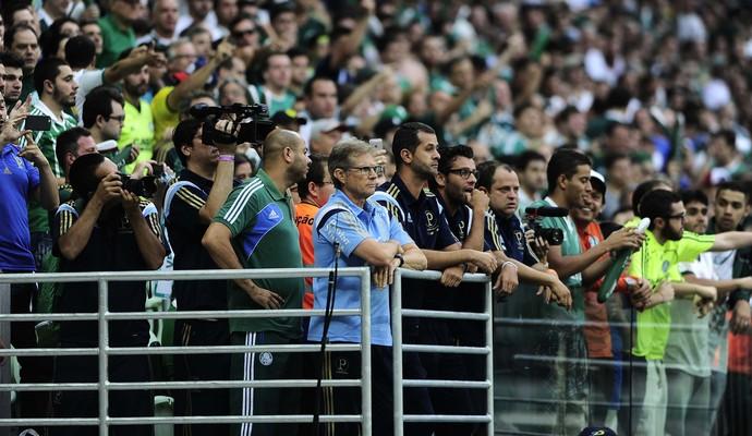 Palmeiras x Santos Final Oswaldo de Oliveira (Foto: Marcos Ribolli)