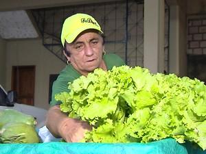Alface santarém (Foto: Reprodução/TV Tapajós)