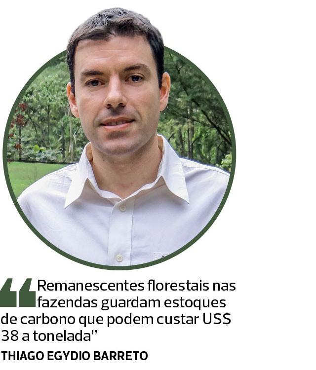 Fazenda Sustentavel (Foto:  )
