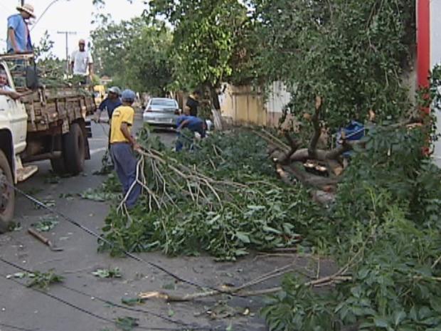 Equipes da prefeitura trabalharam na recuperação da cidade. (Foto: Reprodução/TV Tem)