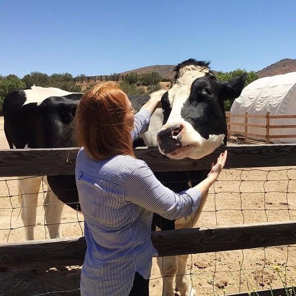 Minha primeira visita à Farm Sanctuary, uma fazenda que abriga bichos resgatados em Los Angeles e lugar favorito de Kat Von D (Foto: Divulgação)