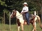 Cavalgada reúne criadores de Mangalarga em Mineiros do Tietê