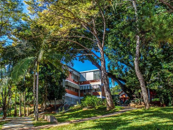 Fauna e flora do ICMC - USP ganham museu a céu aberto e colaborativo (Foto: Divulgação)