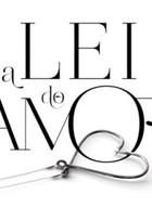 15 curiosidades sobre 'A Lei do Amor', a nova novela das 9