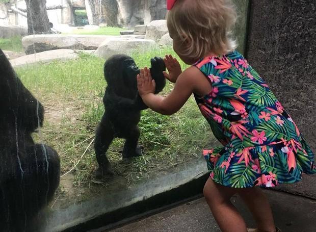 Menina e gorila interagem em zoológico do Texas (Foto: Reprodução/ Facebook)