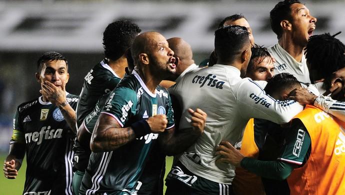 12ef8ceebb Santos Palmeiras (Foto  Marcos Ribolli)
